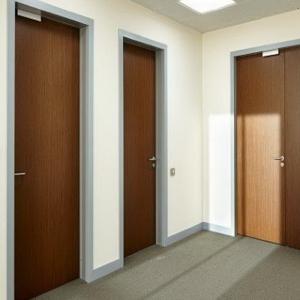 Офисные двери ORMAN